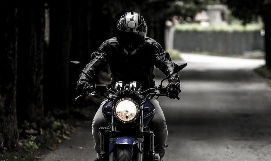 taille unique plaque immatriculation moto